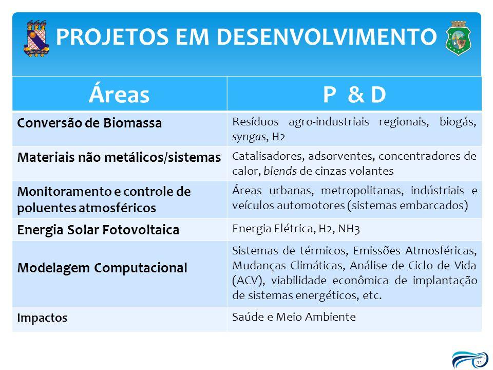11 PROJETOS EM DESENVOLVIMENTO ÁreasP & D Conversão de Biomassa Resíduos agro-industriais regionais, biogás, syngas, H2 Materiais não metálicos/sistem