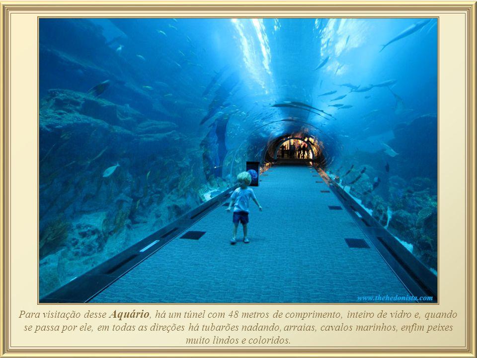 No Dubai Mall encontra-se o Aquário que já foi tido como o maior do mundo, e que possui 33.000 animais aquáticos em um tanque com 10 milhões de litros