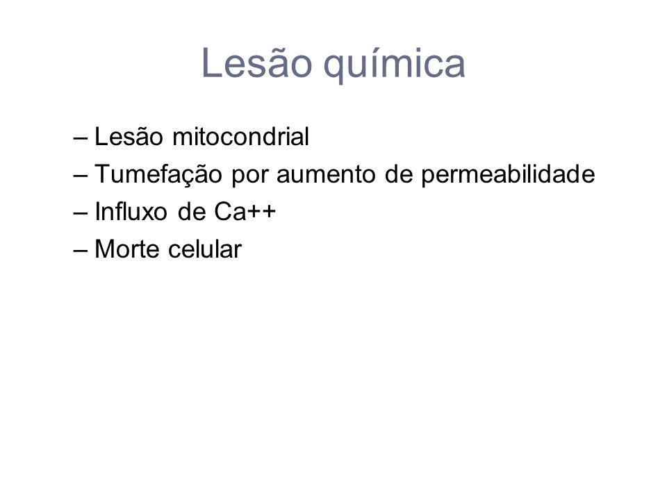 Lesão química –Lesão mitocondrial –Tumefação por aumento de permeabilidade –Influxo de Ca++ –Morte celular