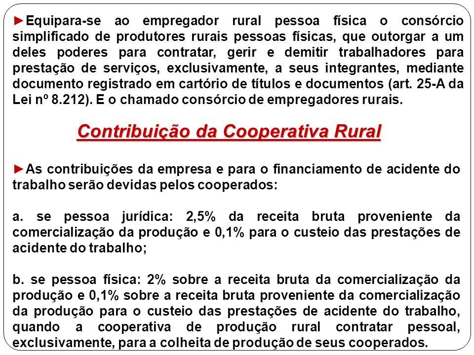 ►Equipara-se ao empregador rural pessoa física o consórcio simplificado de produtores rurais pessoas físicas, que outorgar a um deles poderes para con