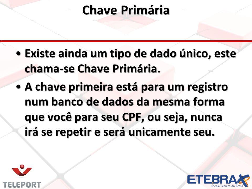 Chave Primária Existe ainda um tipo de dado único, este chama-se Chave Primária.