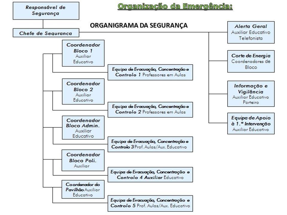 ORGANIGRAMA DA SEGURANÇA