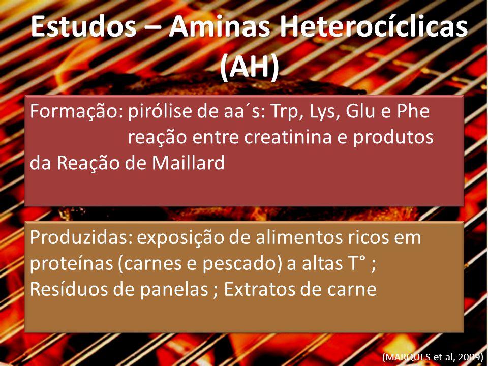 Estudos – Aminas Heterocíclicas (AH) (MARQUES et al, 2009) Formação: pirólise de aa´s: Trp, Lys, Glu e Phe reação entre creatinina e produtos da Reaçã