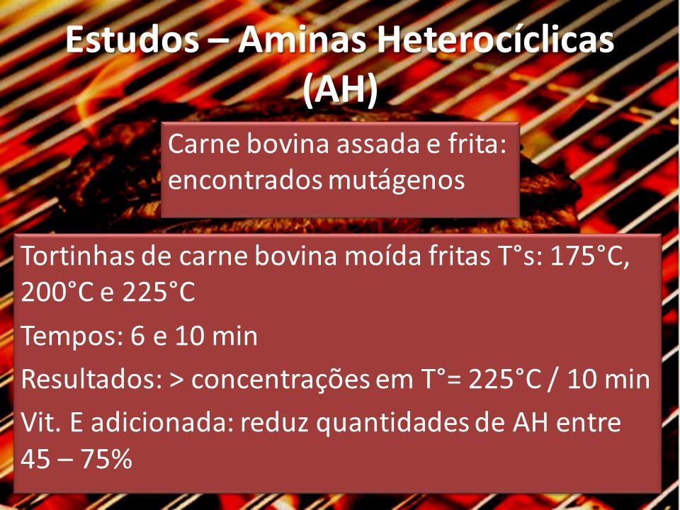 Estudos – Aminas Heterocíclicas (AH) Carne bovina assada e frita: encontrados mutágenos Tortinhas de carne bovina moída fritas T°s: 175°C, 200°C e 225