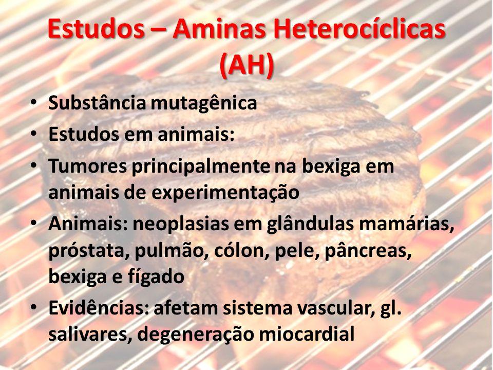 Estudos – Aminas Heterocíclicas (AH) Substância mutagênica Estudos em animais: Tumores principalmente na bexiga em animais de experimentação Animais: