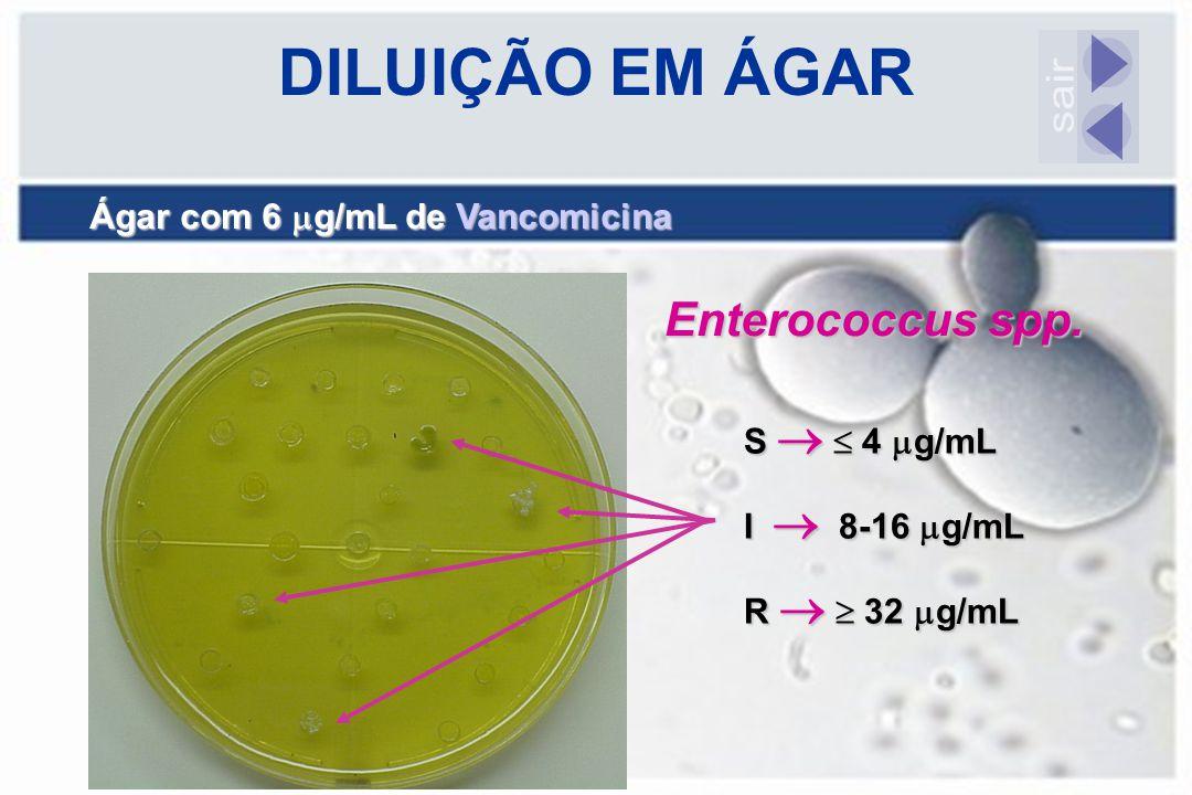 DILUIÇÃO EM ÁGAR Ágar com 6  g/mL de Vancomicina Enterococcus spp. S   4  g/mL I  8-16  g/mL R   32  g/mL