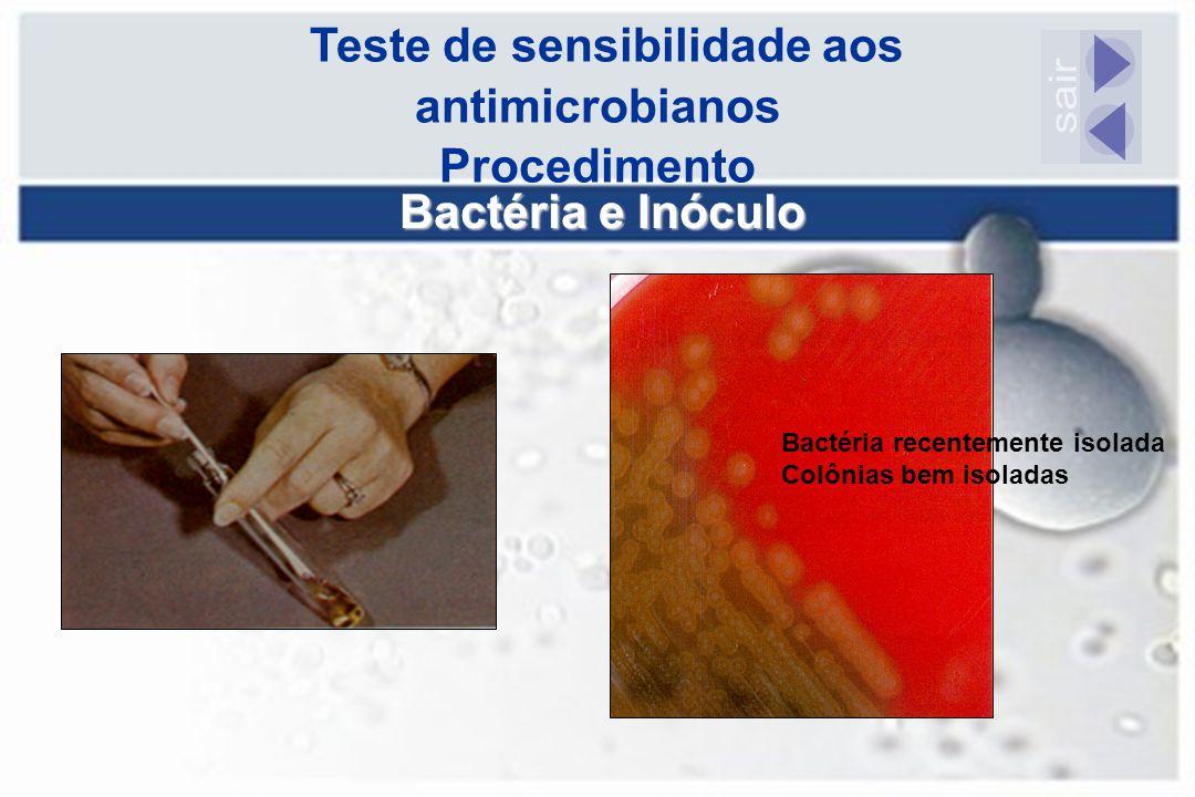 Teste de sensibilidade aos antimicrobianos Procedimento Bactéria e Inóculo Bactéria recentemente isolada Colônias bem isoladas