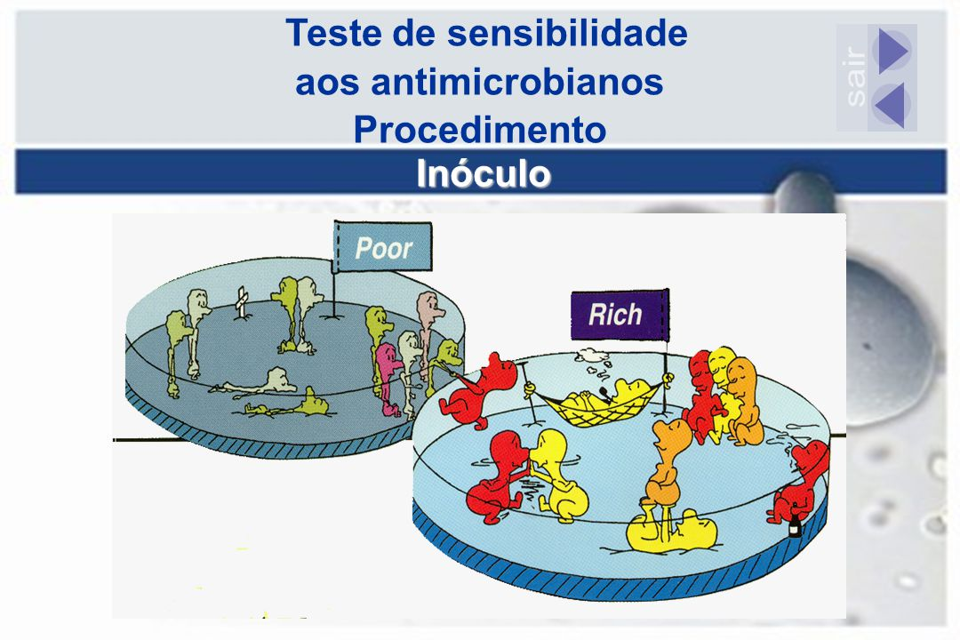 Teste de sensibilidade aos antimicrobianos Procedimento Inóculo