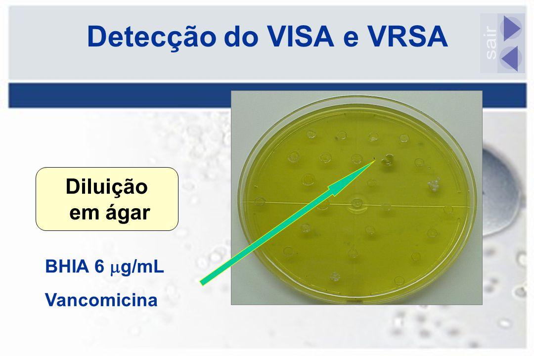 Detecção do VISA e VRSA Diluição em ágar BHIA 6  g/mL Vancomicina