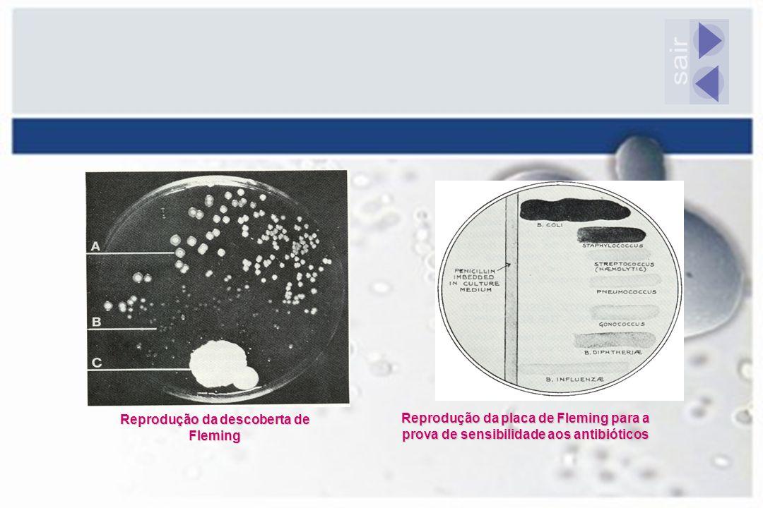 Reprodução da descoberta de Fleming Reprodução da placa de Fleming para a prova de sensibilidade aos antibióticos