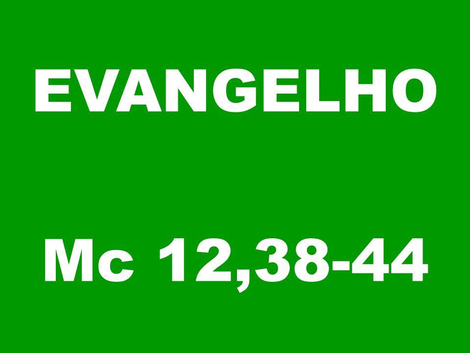 EVANGELHO Mc 12,38-44