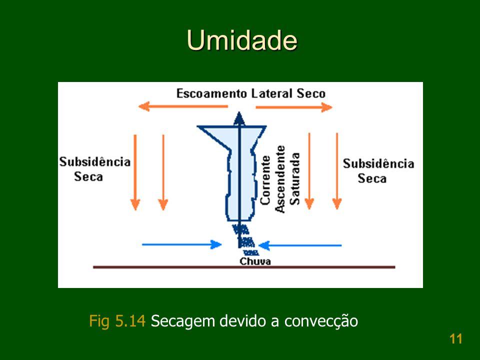11 Umidade Fig 5.14 Secagem devido a convecção