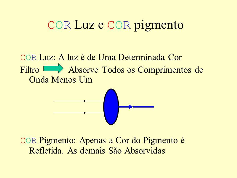 COR Luz e COR pigmento COR Luz: A luz é de Uma Determinada Cor Filtro Absorve Todos os Comprimentos de Onda Menos Um COR Pigmento: Apenas a Cor do Pigmento é Refletida.
