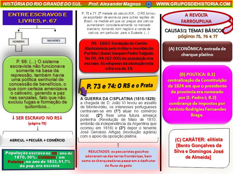HISTÓRIA DO RIO GRANDE DO SUL Prof.