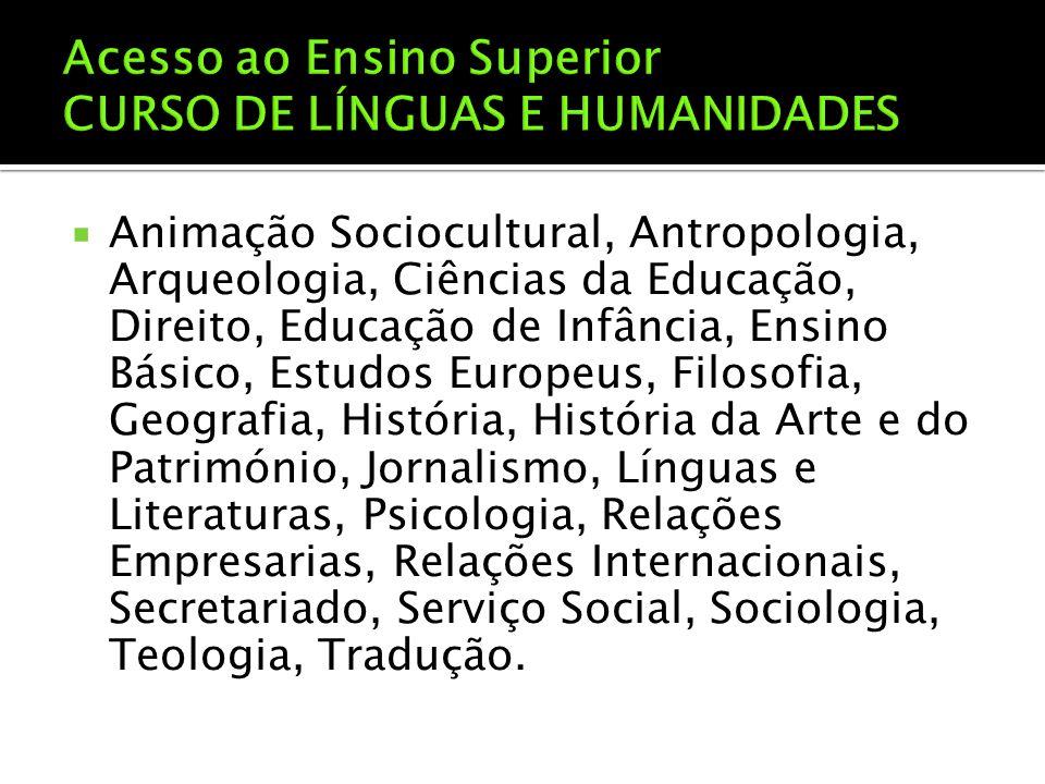  Animação Sociocultural, Antropologia, Arqueologia, Ciências da Educação, Direito, Educação de Infância, Ensino Básico, Estudos Europeus, Filosofia,