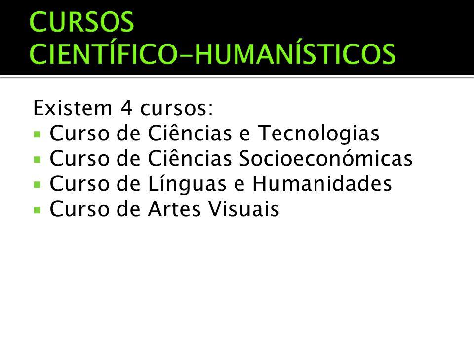 Existem 4 cursos:  Curso de Ciências e Tecnologias  Curso de Ciências Socioeconómicas  Curso de Línguas e Humanidades  Curso de Artes Visuais