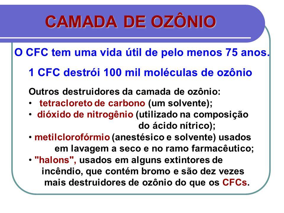 CAMADA DE OZÔNIO Outros destruidores da camada de ozônio: tetracloreto de carbono (um solvente); dióxido de nitrogênio (utilizado na composição do áci