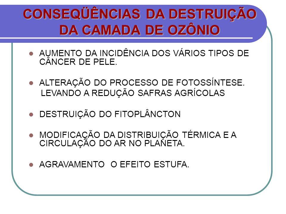AUMENTO DA INCIDÊNCIA DOS VÁRIOS TIPOS DE CÂNCER DE PELE. ALTERAÇÃO DO PROCESSO DE FOTOSSÍNTESE. LEVANDO A REDUÇÃO SAFRAS AGRÍCOLAS DESTRUIÇÃO DO FITO