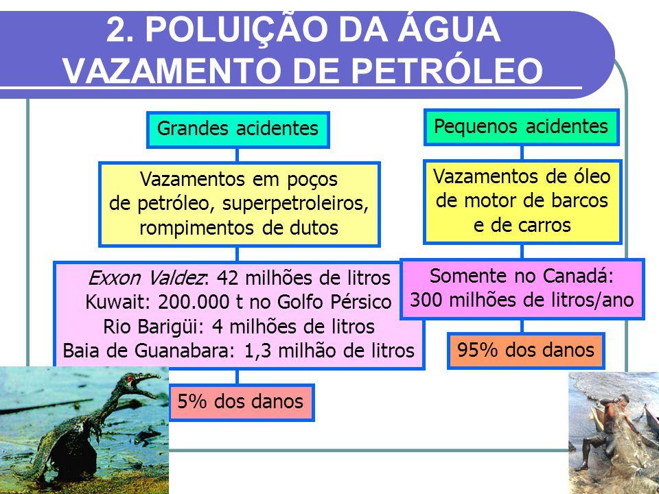 2. POLUIÇÃO DA ÁGUA VAZAMENTO DE PETRÓLEO Grandes acidentes Vazamentos em poços de petróleo, superpetroleiros, rompimentos de dutos Exxon Valdez: 42 m