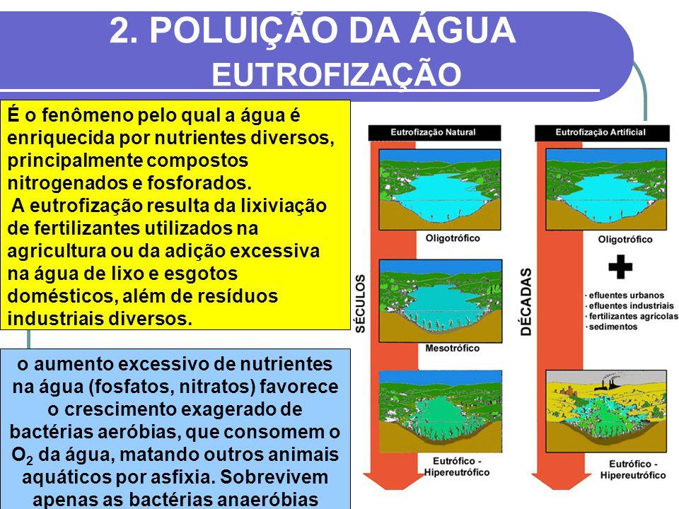 2. POLUIÇÃO DA ÁGUA EUTROFIZAÇÃO o aumento excessivo de nutrientes na água (fosfatos, nitratos) favorece o crescimento exagerado de bactérias aeróbias