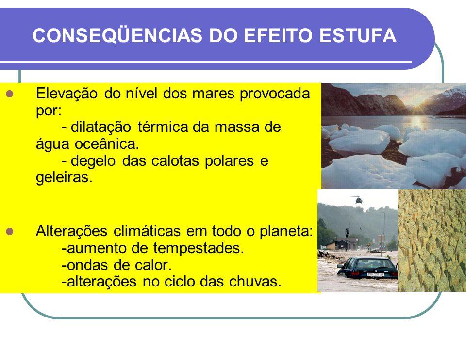CONSEQÜENCIAS DO EFEITO ESTUFA Aumento da biomassa terrestre e oceânica provocada por: -aceleração da função clorofiliana.