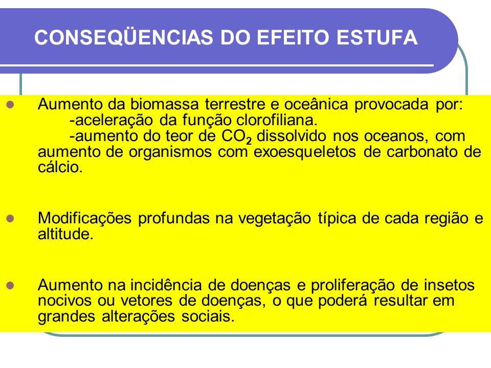 CONSEQÜENCIAS DO EFEITO ESTUFA NO BRASIL A partir do ano 2040 - 2050, a Amazônia entra em uma fase de colapso.