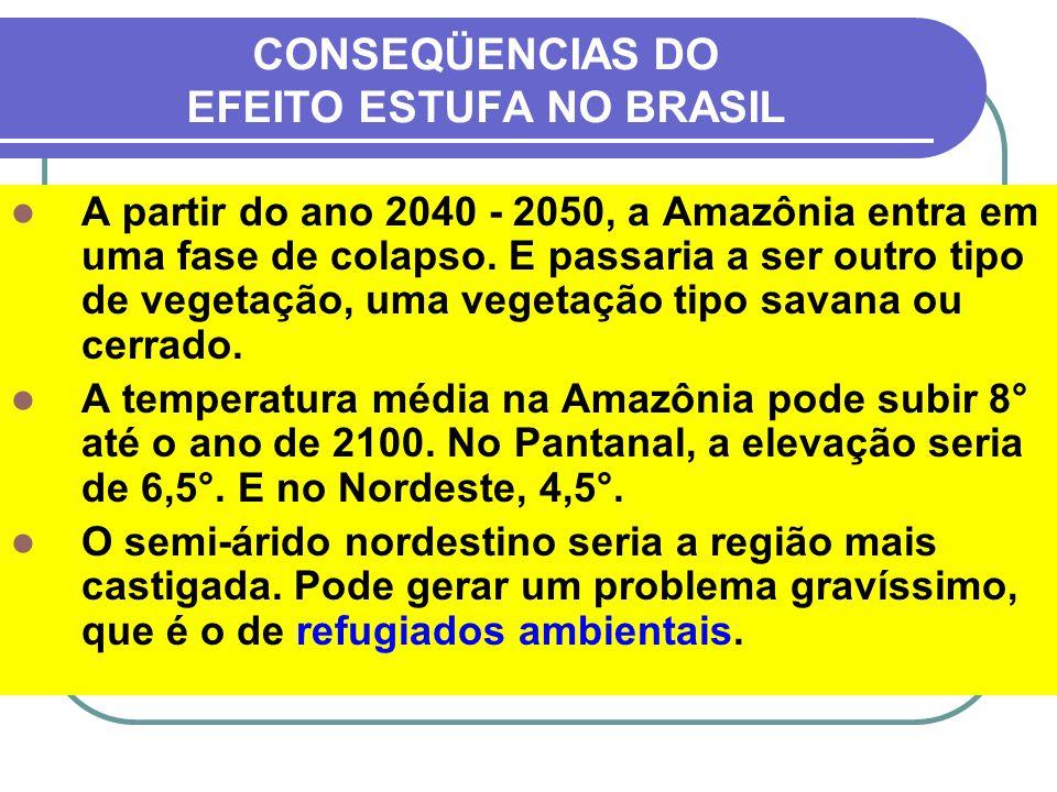 CONSEQÜENCIAS DO EFEITO ESTUFA NO BRASIL A partir do ano 2040 - 2050, a Amazônia entra em uma fase de colapso. E passaria a ser outro tipo de vegetaçã