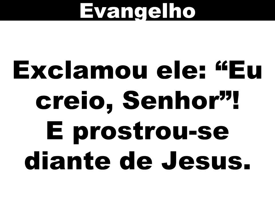 Exclamou ele: Eu creio, Senhor ! E prostrou-se diante de Jesus. Evangelho