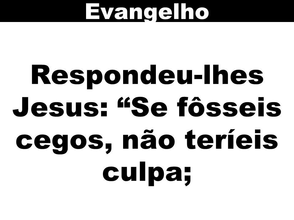 Respondeu-lhes Jesus: Se fôsseis cegos, não teríeis culpa; Evangelho