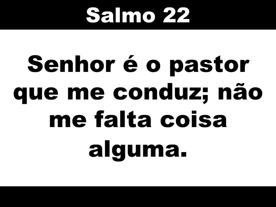 Senhor é o pastor que me conduz; não me falta coisa alguma. Salmo 22