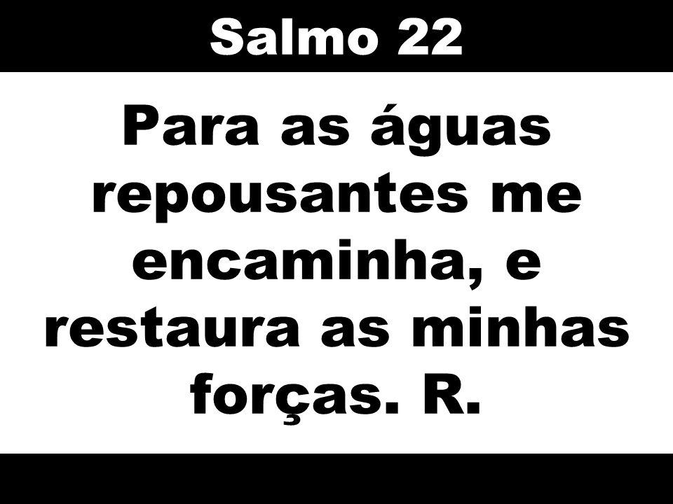 Para as águas repousantes me encaminha, e restaura as minhas forças. R. Salmo 22