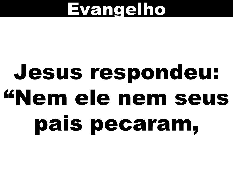 Jesus respondeu: Nem ele nem seus pais pecaram, Evangelho
