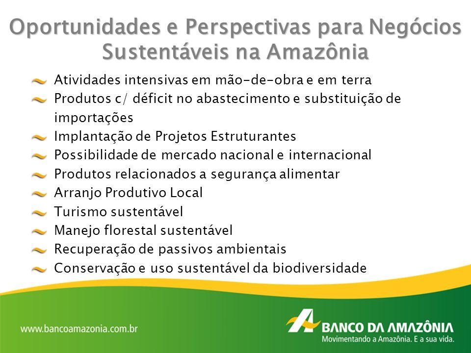 Oportunidades e Perspectivas paraNegócios Sustentáveis na Amazônia Oportunidades e Perspectivas para Negócios Sustentáveis na Amazônia Atividades inte