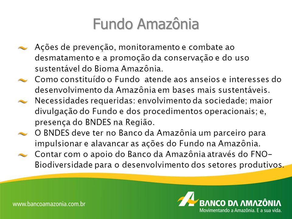 Fundo Amazônia Ações de prevenção, monitoramento e combate ao desmatamento e a promoção da conservação e do uso sustentável do Bioma Amazônia. Como co