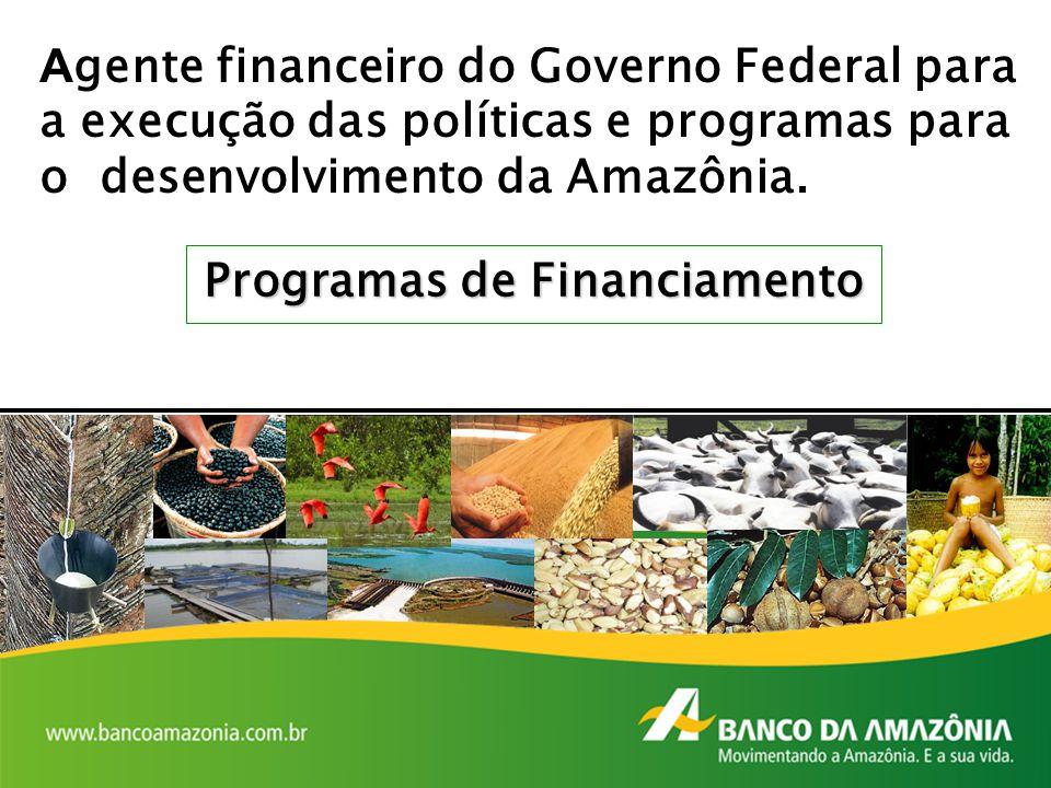 A gente financeiro do Governo Federal para a execução das políticas e programas para o desenvolvimento da Amazônia. Programas de Financiamento