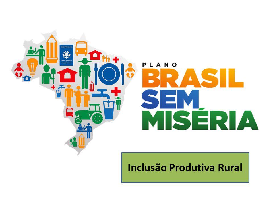 Plano Brasil Sem Miséria A miséria tem caras e necessidades diferentes conforme a região.