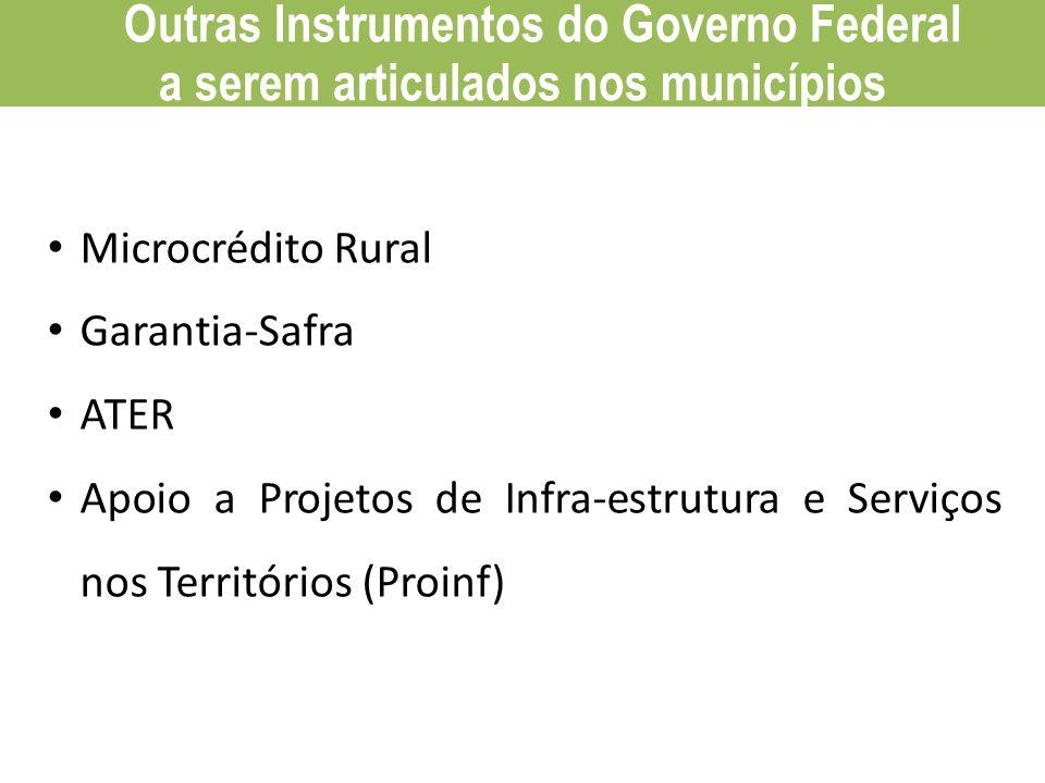 PAA Compra Institucional Microcrédito Rural Garantia-Safra ATER Apoio a Projetos de Infra-estrutura e Serviços nos Territórios (Proinf) Outras Instrum