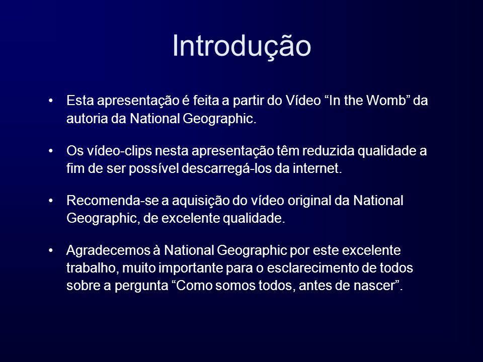 Introdução Esta apresentação é feita a partir do Vídeo In the Womb da autoria da National Geographic.