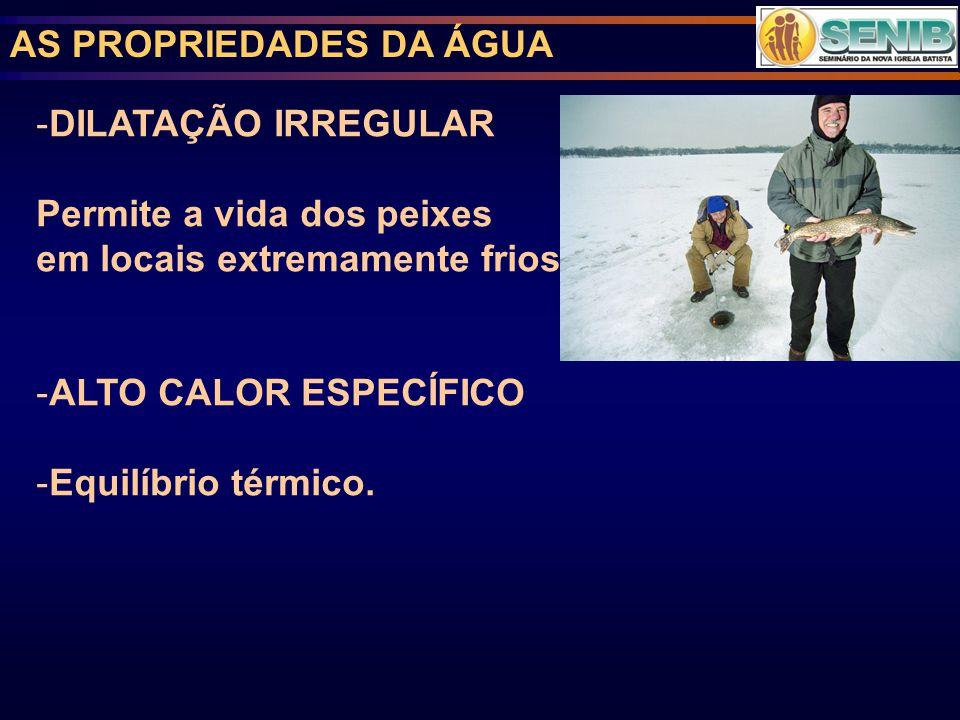 AS PROPRIEDADES DA ÁGUA -DILATAÇÃO IRREGULAR Permite a vida dos peixes em locais extremamente frios.