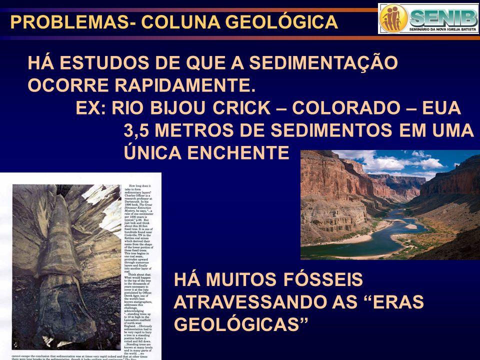 PROBLEMAS- COLUNA GEOLÓGICA HÁ ESTUDOS DE QUE A SEDIMENTAÇÃO OCORRE RAPIDAMENTE.
