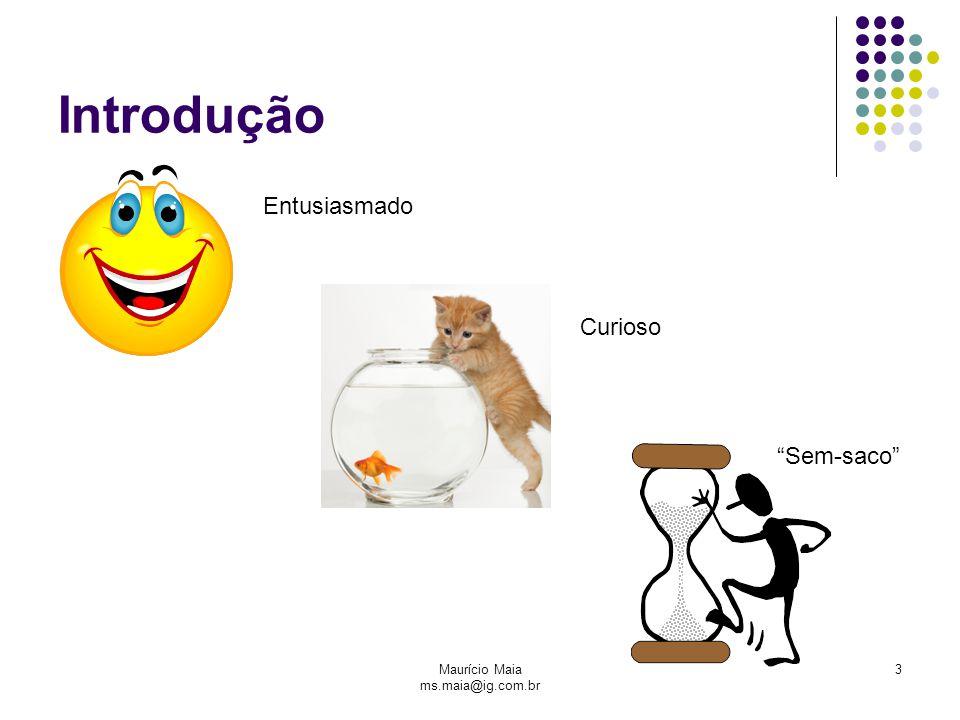 Maurício Maia ms.maia@ig.com.br 3 Introdução Entusiasmado Curioso Sem-saco