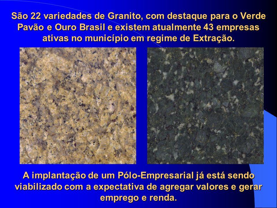 São 22 variedades de Granito, com destaque para o Verde Pavão e Ouro Brasil e existem atualmente 43 empresas ativas no município em regime de Extração.