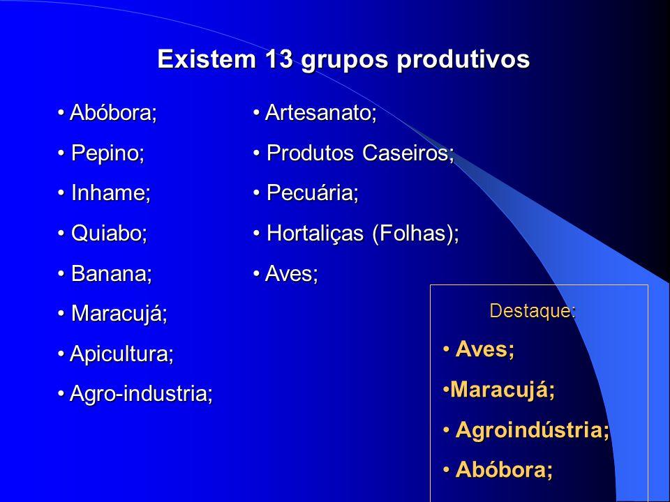 Existem 13 grupos produtivos Existem 13 grupos produtivos Abóbora; Pepino; Inhame; Quiabo; Banana; Maracujá; Apicultura; Agro-industria; Artesanato; Produtos Caseiros; Pecuária; Hortaliças (Folhas); Aves; Destaque: Destaque: Aves; Aves; Maracujá;Maracujá; Agroindústria; Agroindústria; Abóbora; Abóbora;