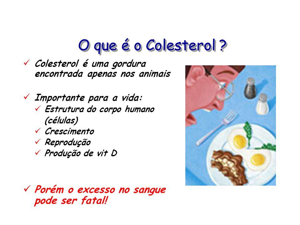 O que é o Colesterol ? Colesterol é uma gordura encontrada apenas nos animais Importante para a vida: Estrutura do corpo humano (células) Crescimento