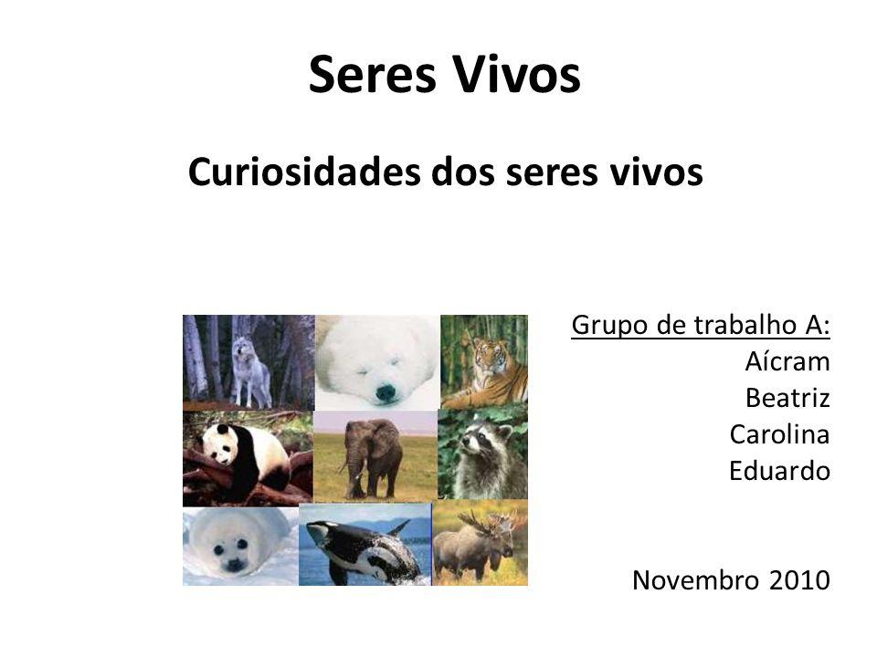 Seres Vivos Curiosidades dos seres vivos Grupo de trabalho A: Aícram Beatriz Carolina Eduardo Novembro 2010