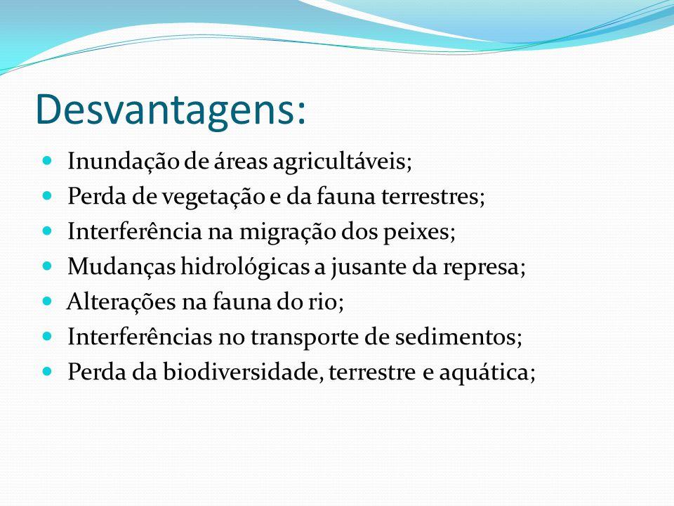 Desvantagens: Inundação de áreas agricultáveis; Perda de vegetação e da fauna terrestres; Interferência na migração dos peixes; Mudanças hidrológicas a jusante da represa; Alterações na fauna do rio; Interferências no transporte de sedimentos; Perda da biodiversidade, terrestre e aquática;