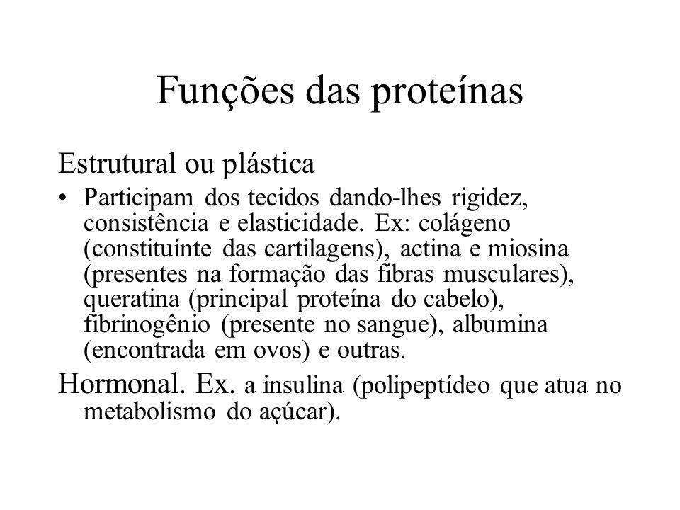 Funções das proteínas Estrutural ou plástica Participam dos tecidos dando-lhes rigidez, consistência e elasticidade. Ex: colágeno (constituínte das ca