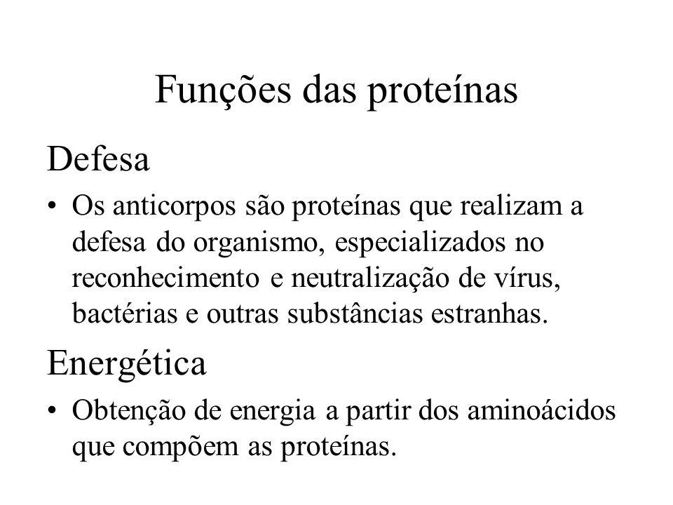 Funções das proteínas Defesa Os anticorpos são proteínas que realizam a defesa do organismo, especializados no reconhecimento e neutralização de vírus