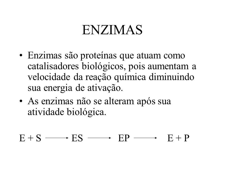 ENZIMAS Enzimas são proteínas que atuam como catalisadores biológicos, pois aumentam a velocidade da reação química diminuindo sua energia de ativação