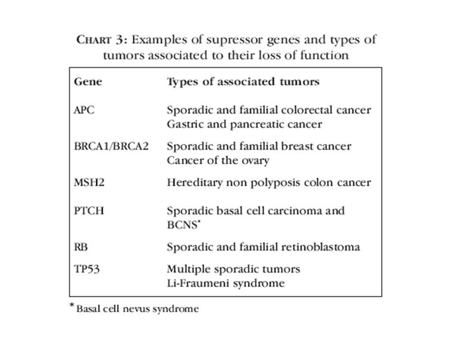Estrutura Terciária ou globular: confere a atividade biológica às proteínas.
